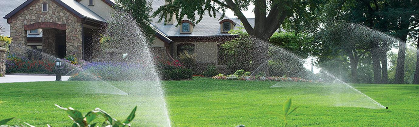 Lawn with Sprinklers